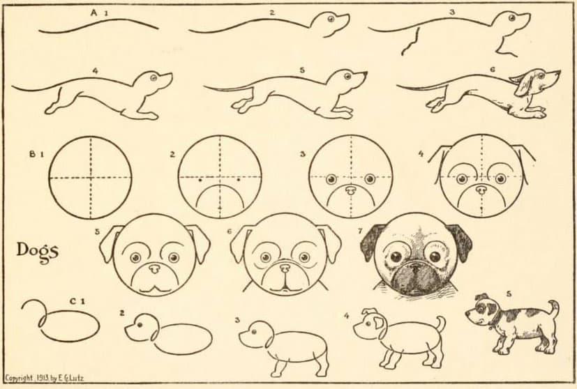 Hoe teken je een hond stap voor stap