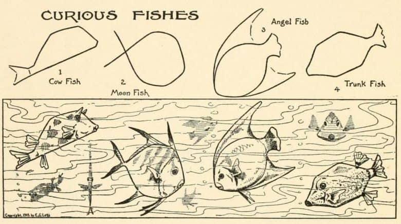 Vis tekenen moeilijk